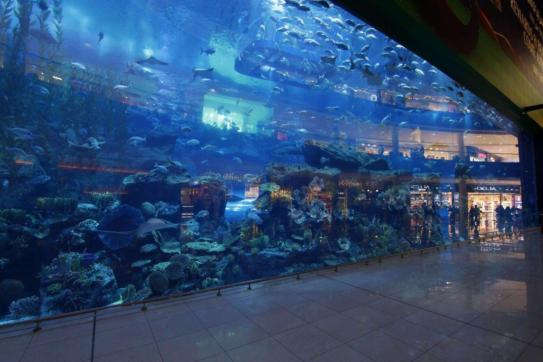 El acuario del Dubai Mall