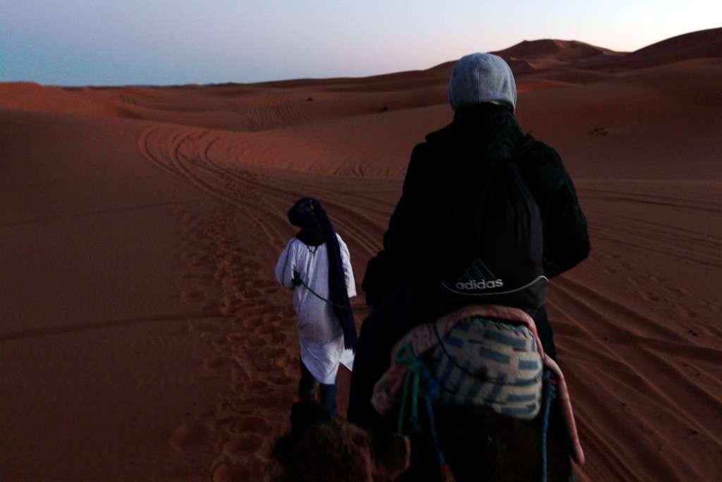 Alberto encima de un camello