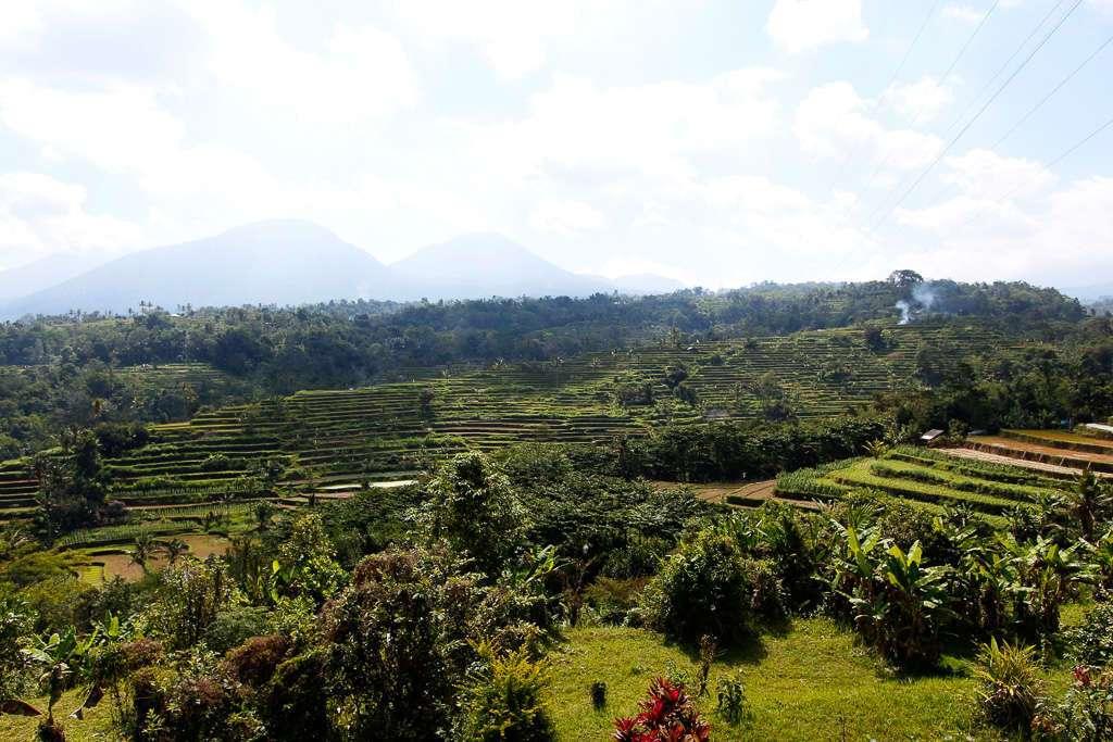 Arrozales de Pacung (Bali)