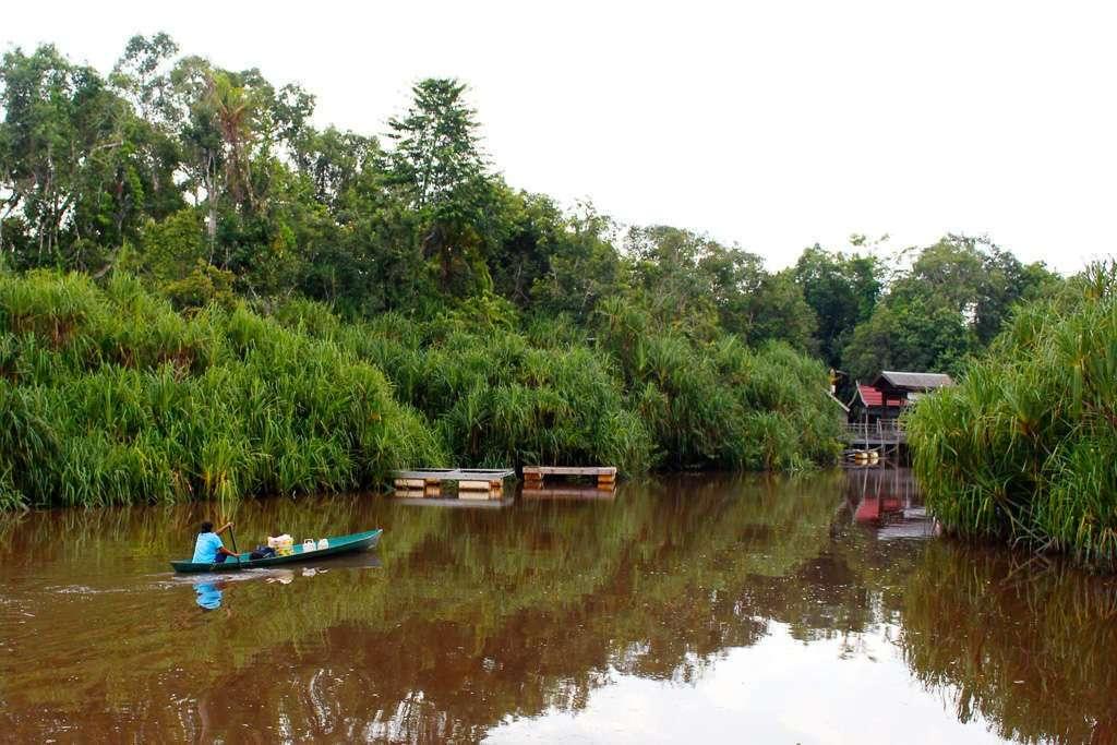 Embarcadero en Borneo