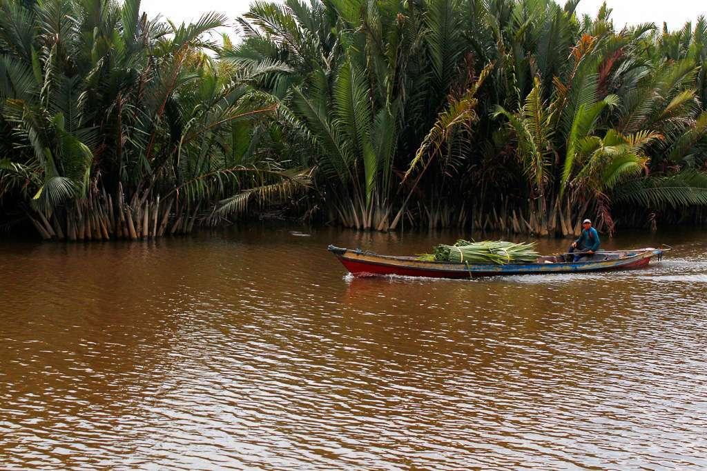 Barcaza en las orillas del río en Borneo
