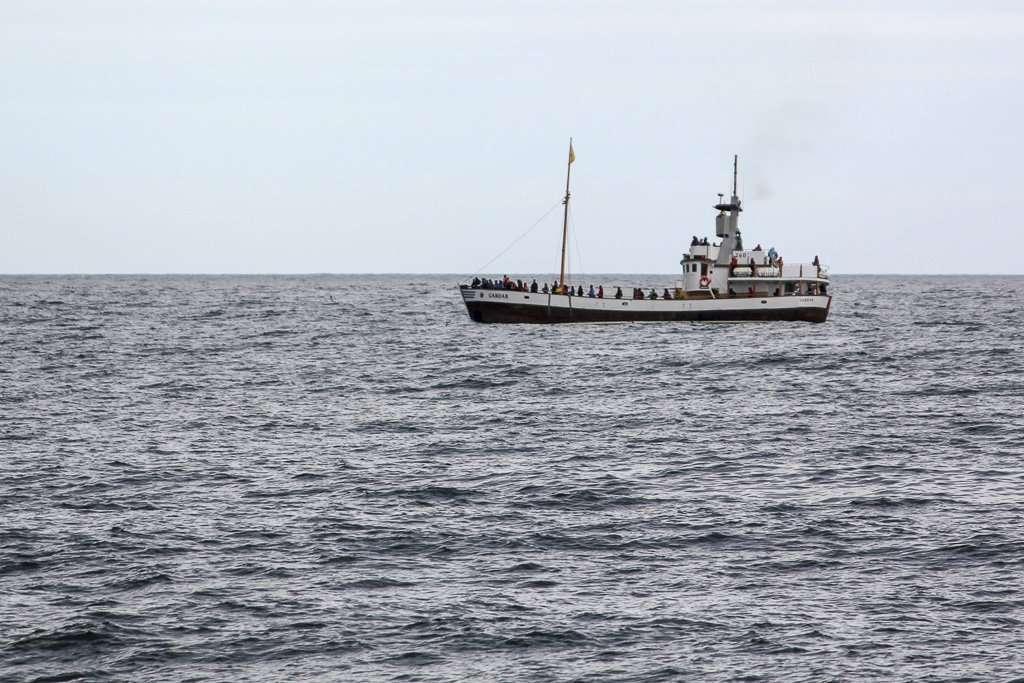 Barco en busca de ballenas en Husavík