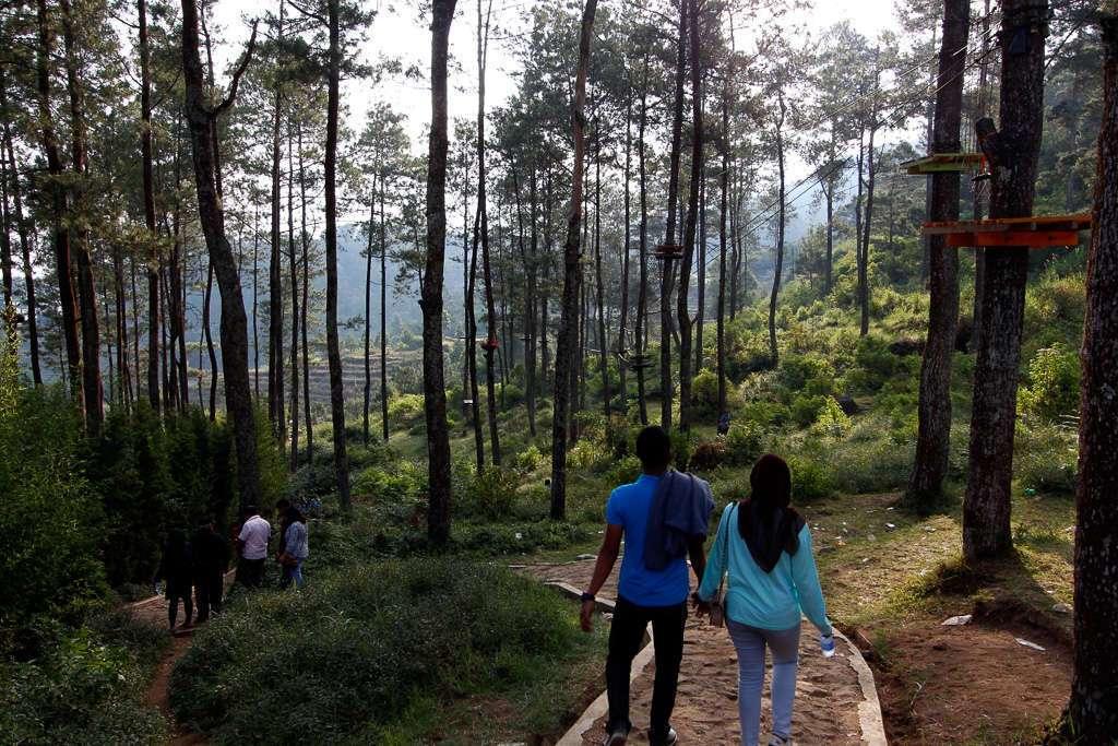 Un bosque en Gedong Songo