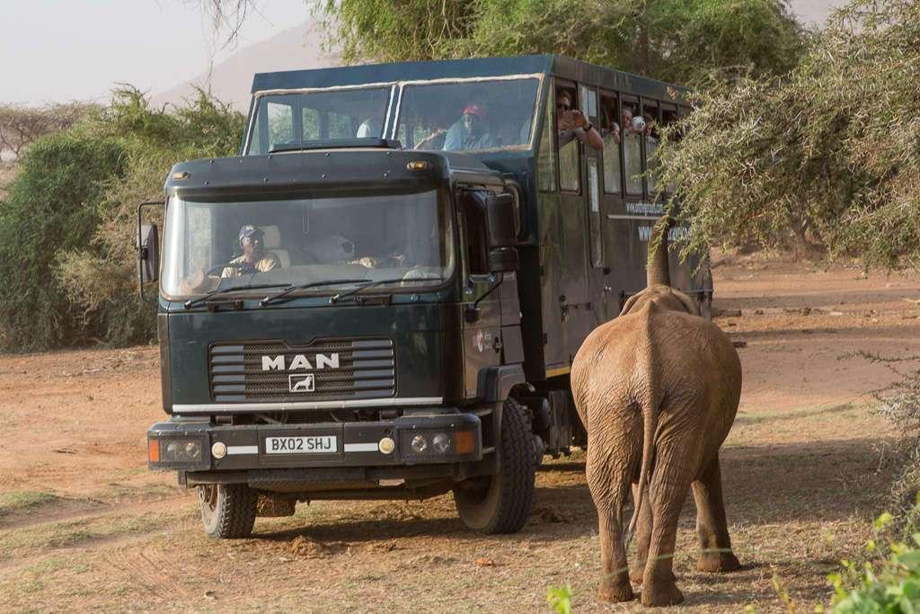 Camión de safari en Samburu