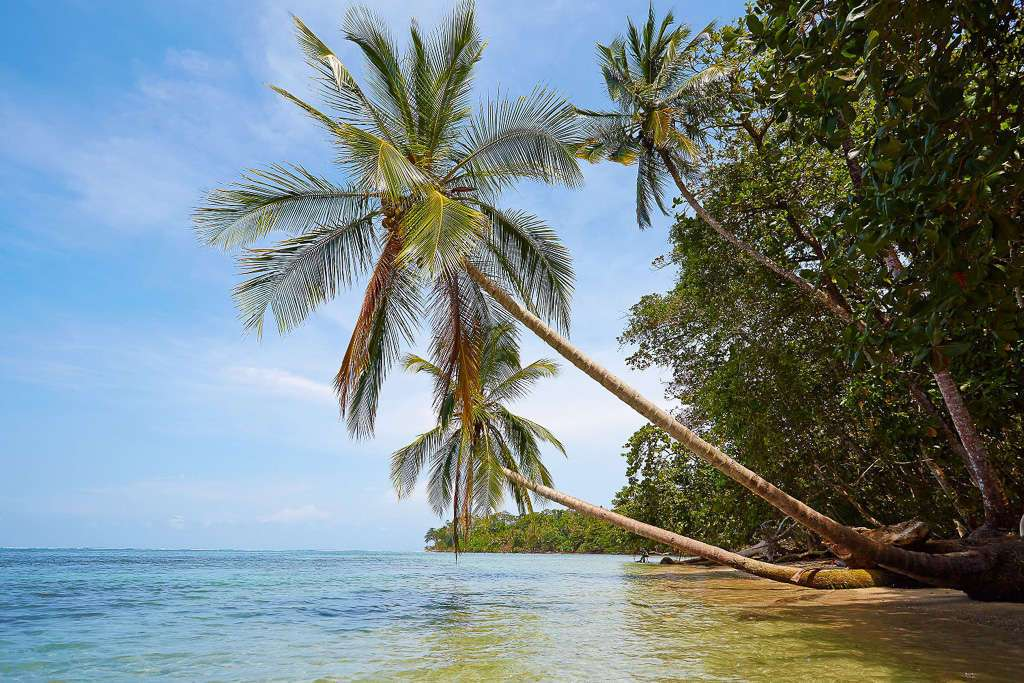 caribe costarricense en Cahuita