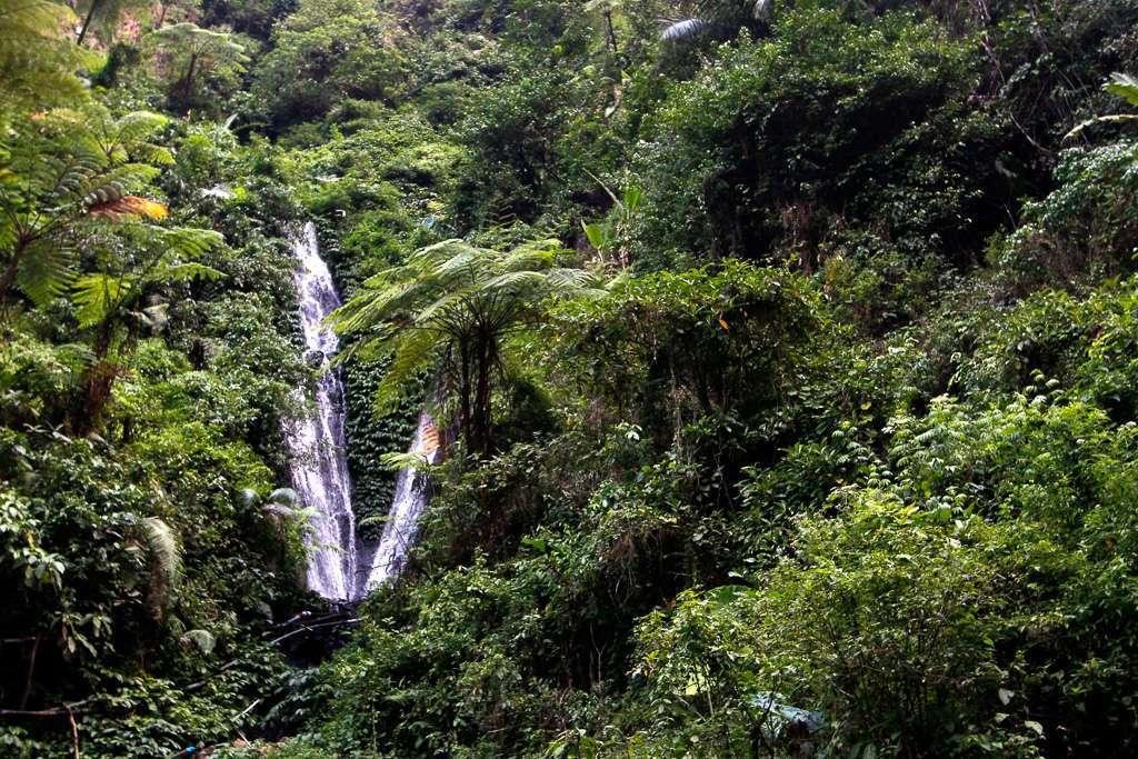 El entorno de la cascada Madakaripura