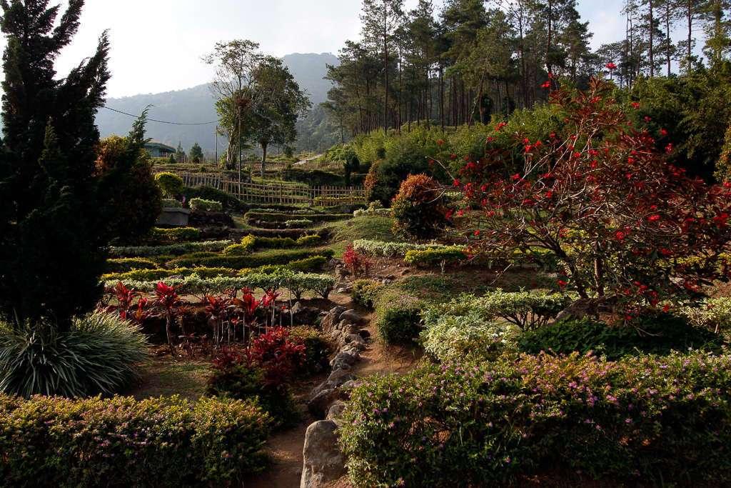 Jardines de Gedong Songo