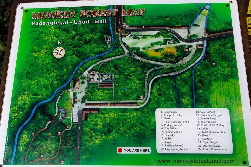 Mapa del Monkey Forest