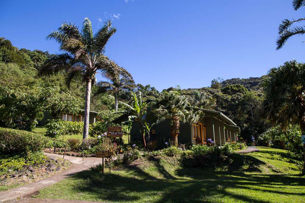 Naturaleza cercana al Cloud Forest Lodge en Monteverde