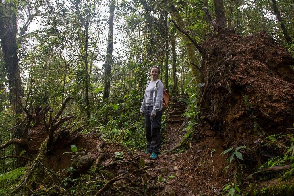 Senderos del Heliconias Lodge en Bijagua