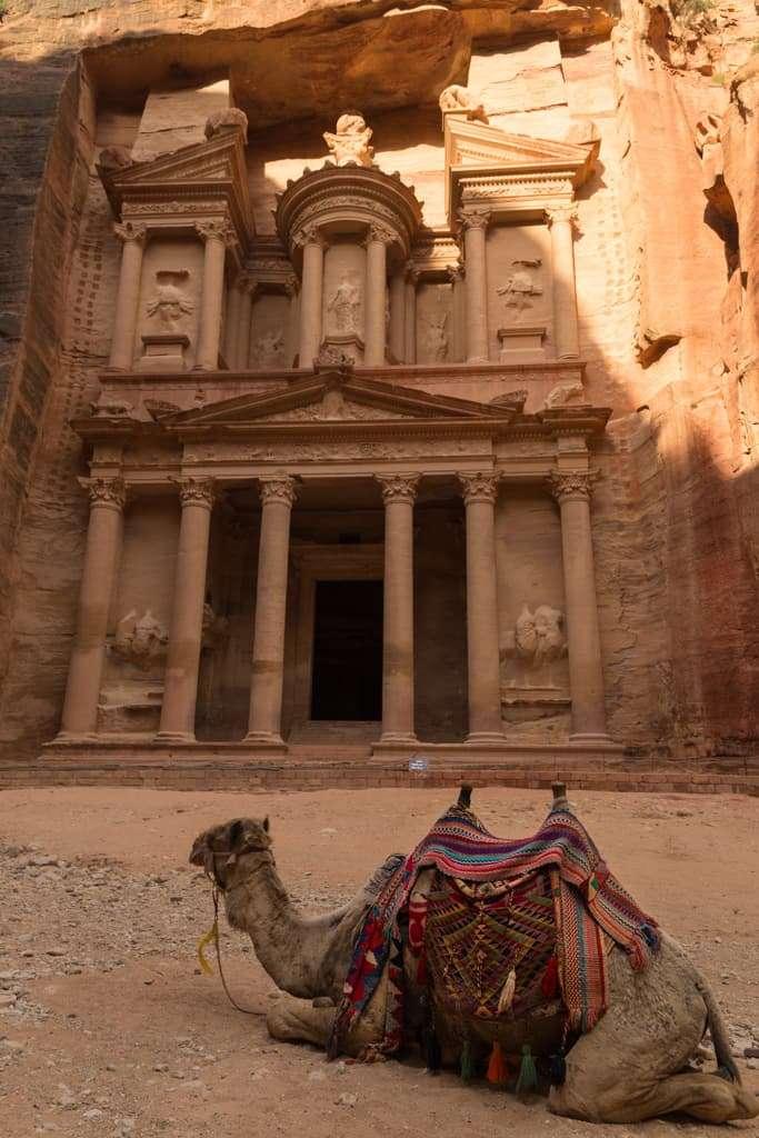 Detalle de camello en el Tesoro de Petra