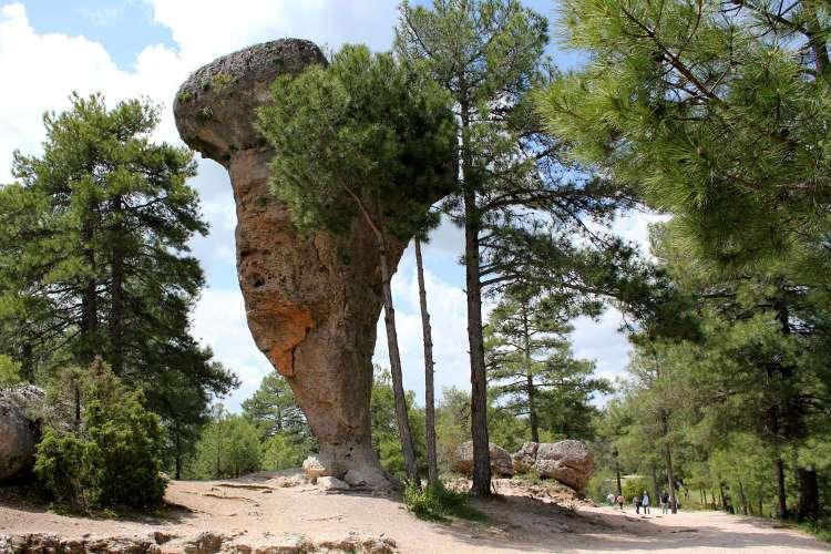 El Tormo Alto en la Ciudad Encantada (Cuenca)