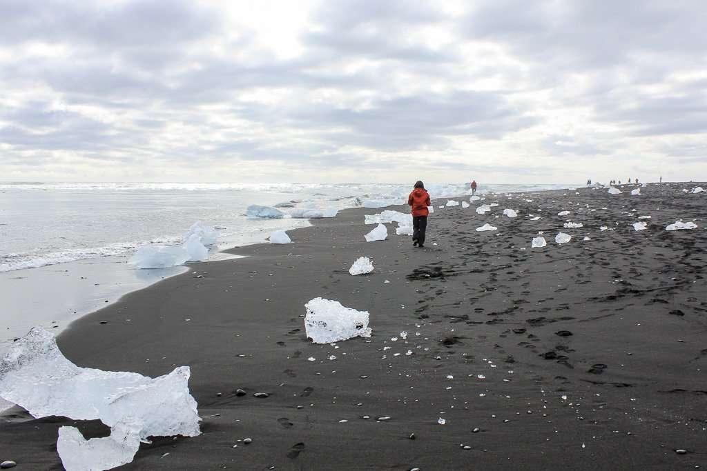 Diamond beach llena de trozos de icebergs