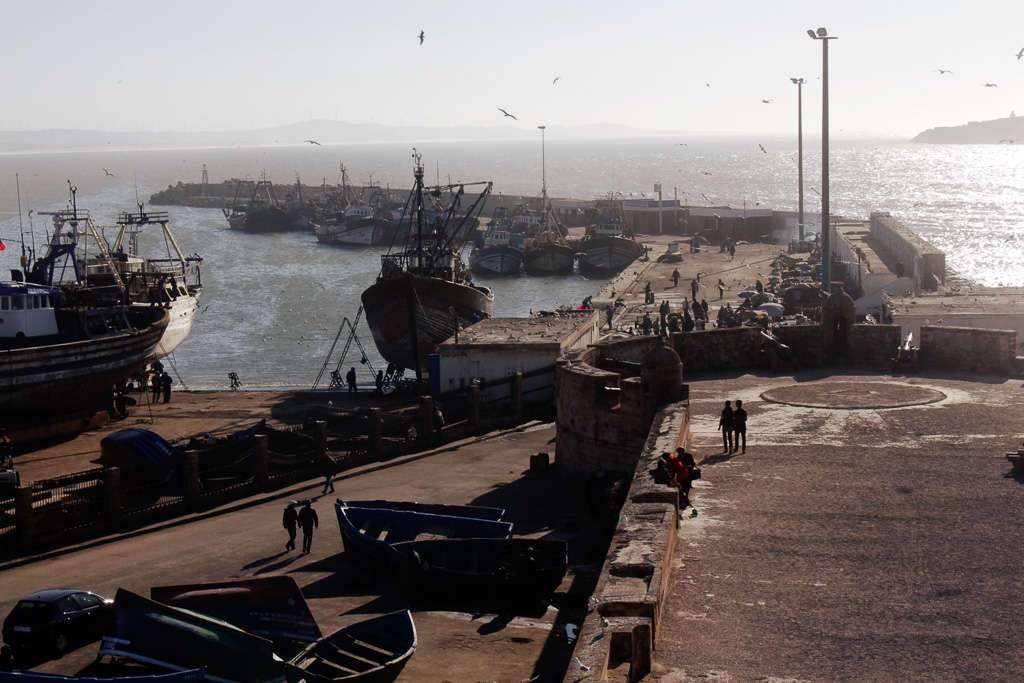 Vista general del puerto pesquero de Essaouira