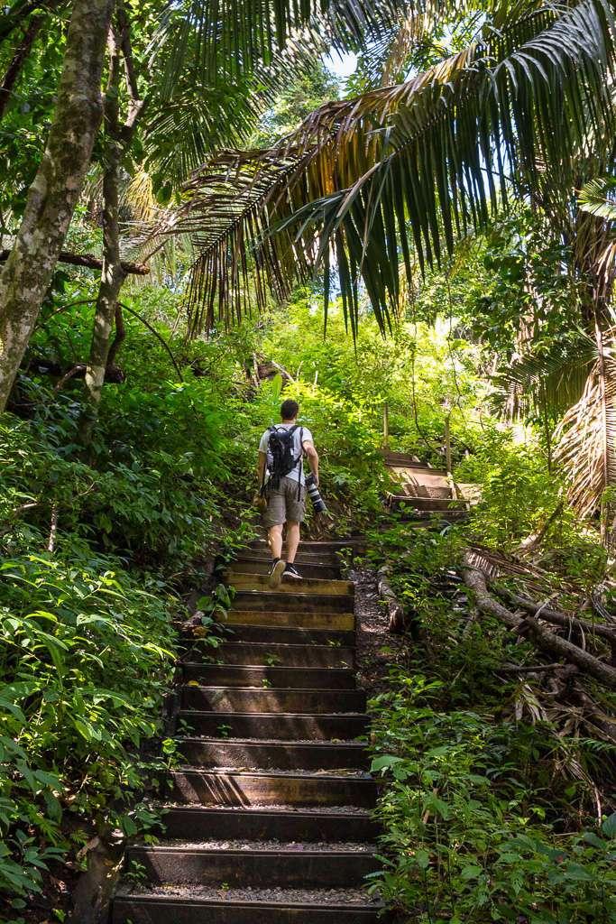 Escaleras del Sendero Punta Catedral, Parque Nacional Manuel Antonio, Costa Rica