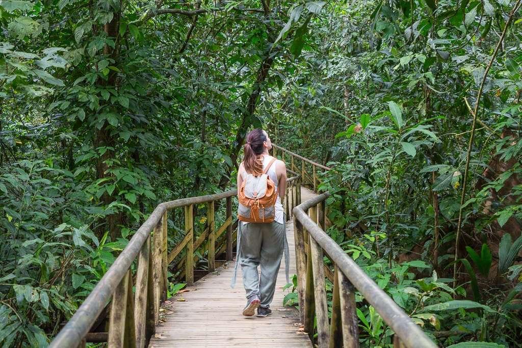 Sendero señalizado El Manglar, Parque Nacional Manuel Antonio, Costa Rica