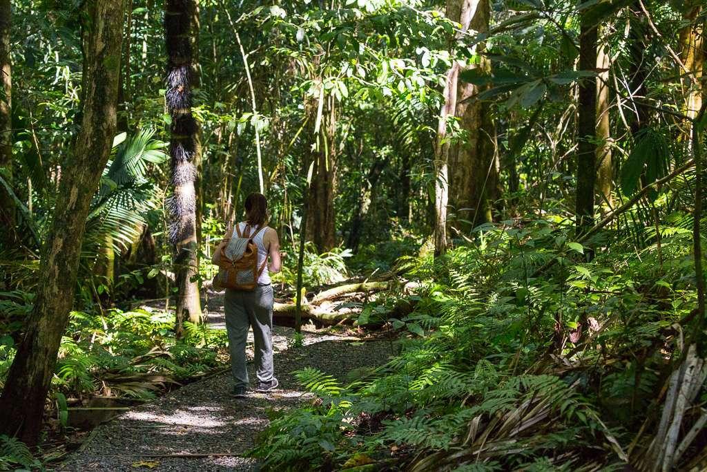 Sendero Punta Catedral, Parque Nacional Manuel Antonio, Costa Rica
