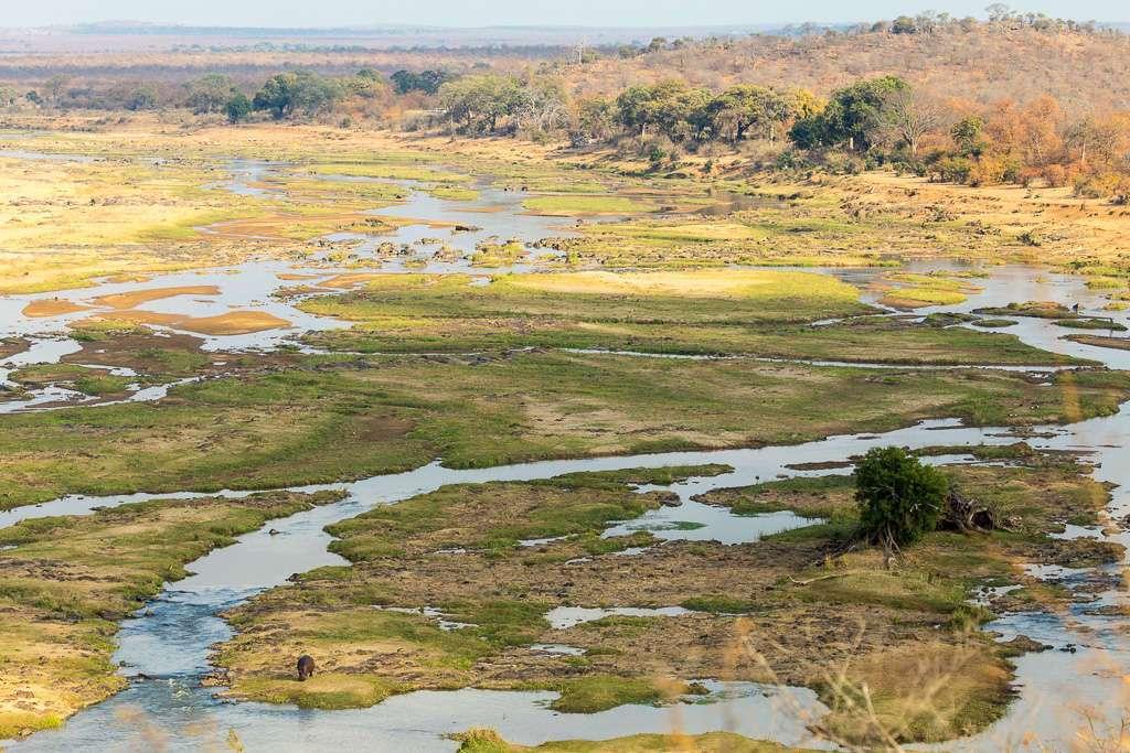 Hipopótamo en el río olifants, Kruger, Sudáfrica