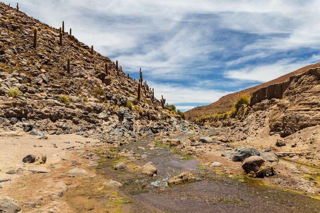 Cañón Guatín, Atacama, Chile