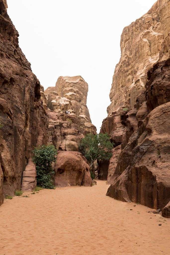 Desfiladero del desierto rojo, Wadi Rum, Jordania