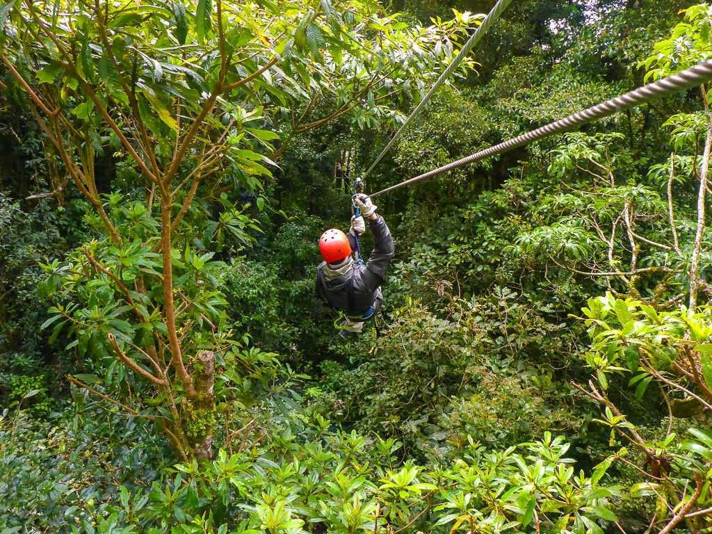 Tirolina metiéndose en el bosque, Monteverde, Costa Rica