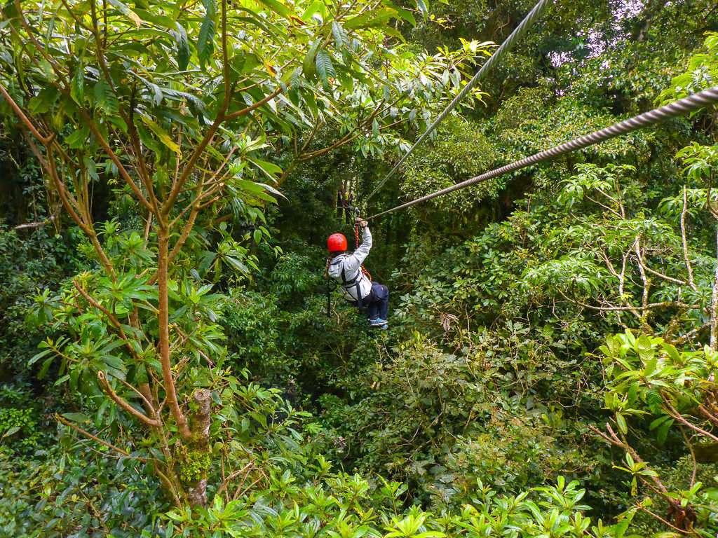 Tirolina dentro del bosque en Monteverde, Costa Rica