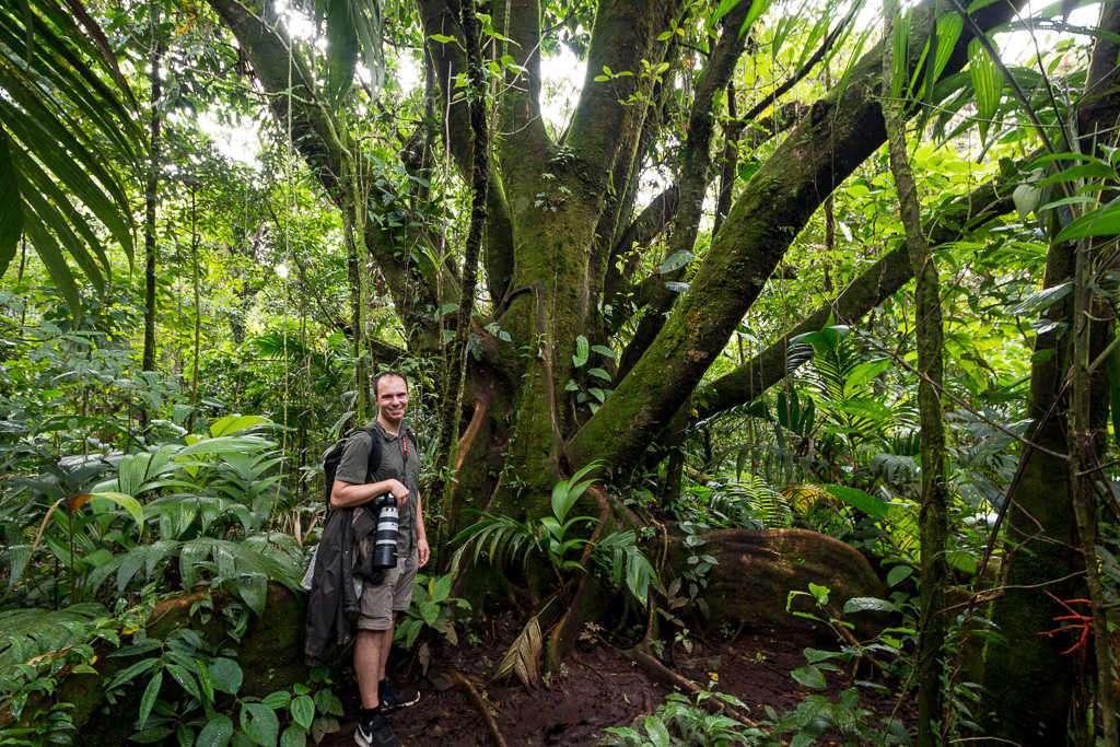 Árbol con muchas ramas en los senderos del parque nacional Volcán Arenal, Costa Rica