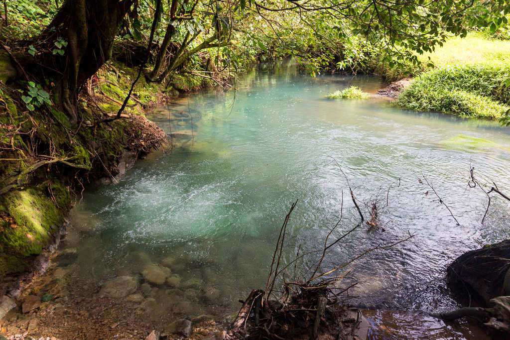 Hervideros del río Cesleste en el parque nacional Volcán Tenorio, Costa Rica