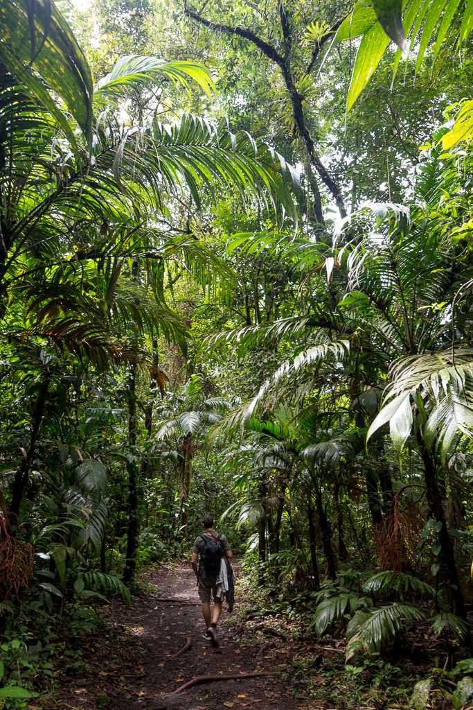 Alberto caminando por los senderos del parque nacional Volcán Arenal, Costa Rica
