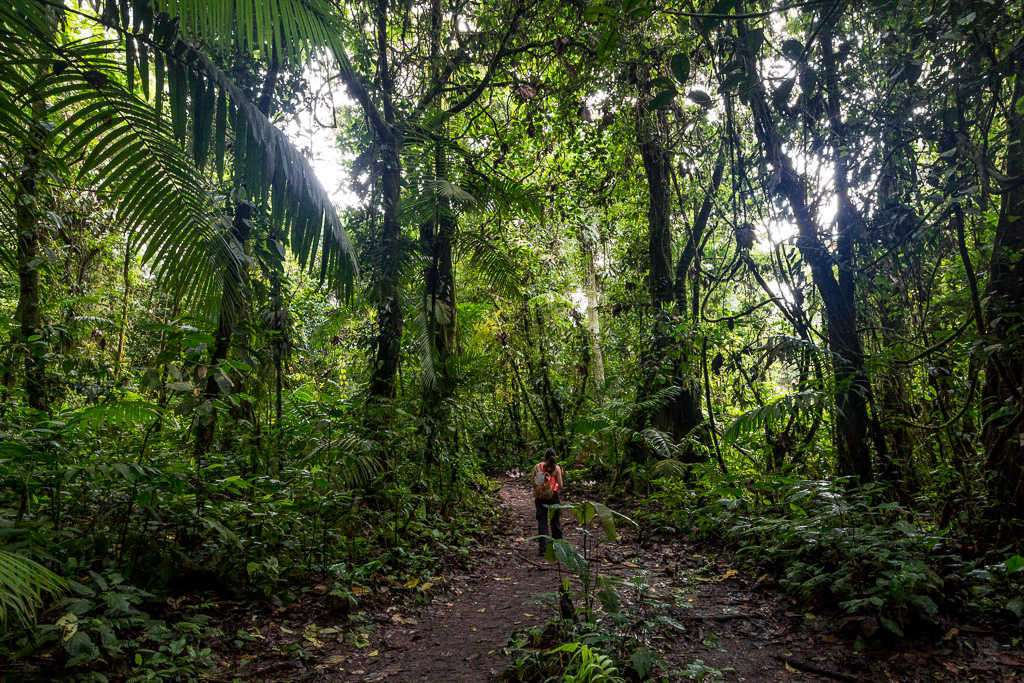 Lena en un sendero del parque nacional Volcán Arenal, Costa Rica