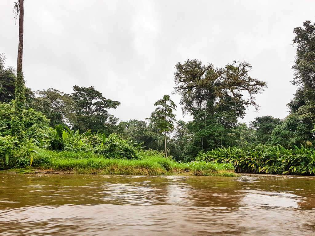 Canales de camino a Tortuguero, Costa Rica