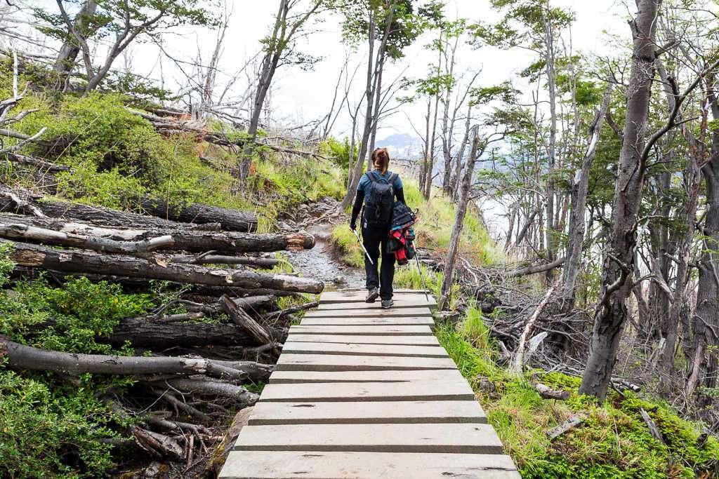 Puente en la ruta refugio Grey - Paine Grande, Torres del Paine, Chile