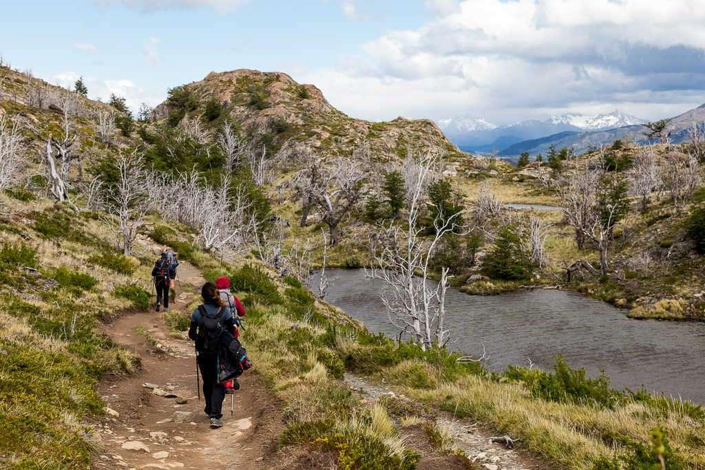 Laguna Los Patos en la ruta refugio Grey - Paine Grande, Torres del Paine, Chile