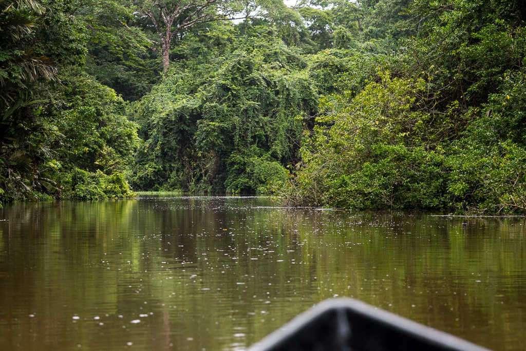Canales secundarios del parque nacional Tortuguero, Costa Rica