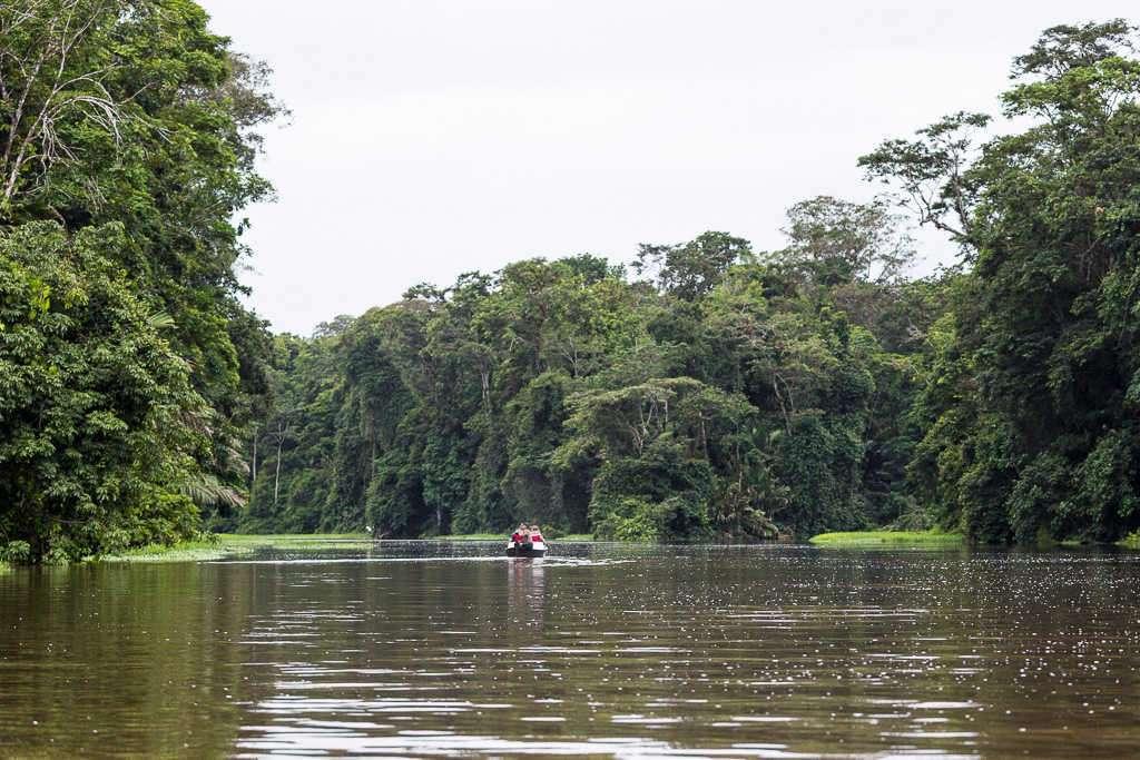 Canal principal de Tortuguero, Costa Rica