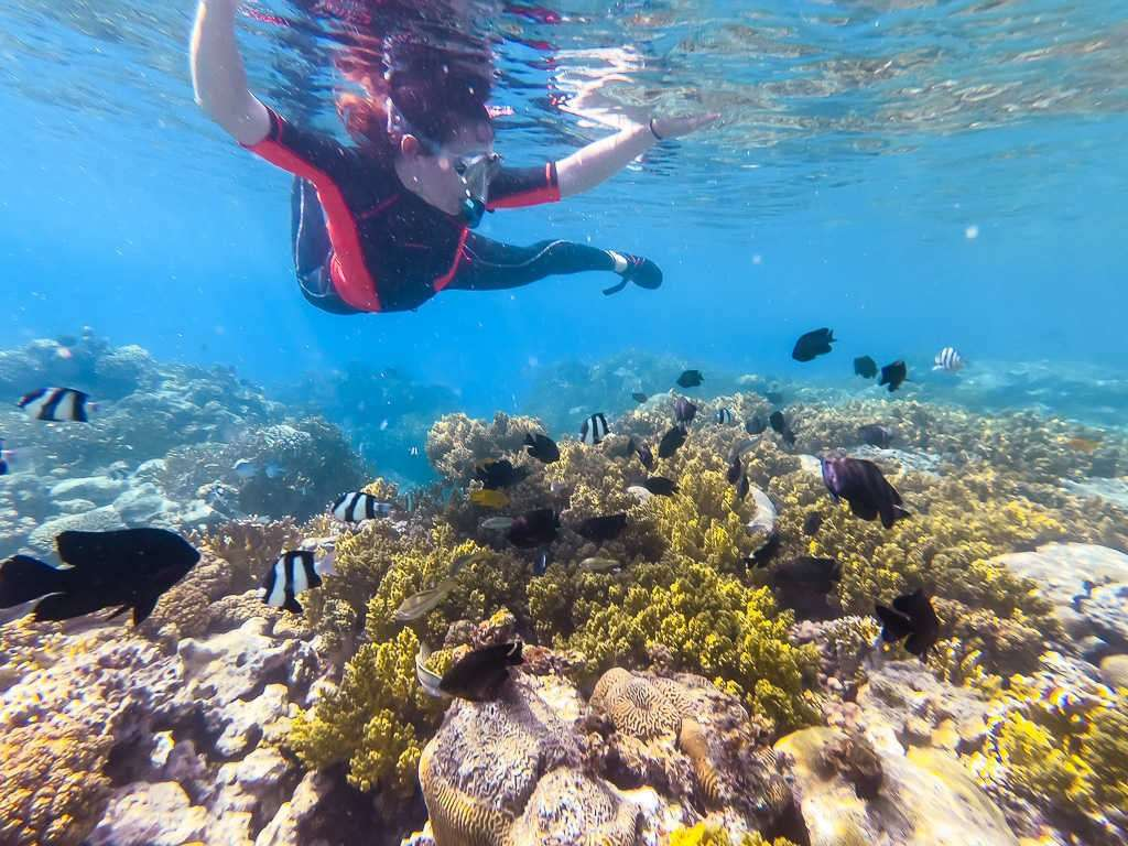Lena haciendo snorkel rodeada de peces en el japanese garden en el mar rojo, Aqaba, Jordania