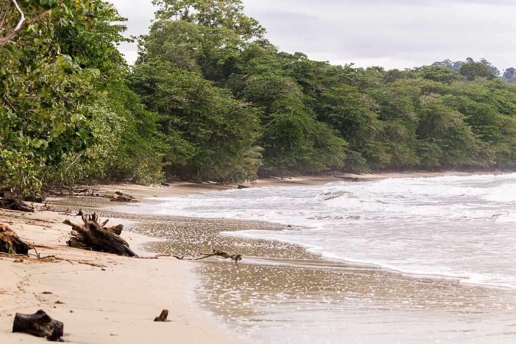 Playa Blanca dentro del parque nacional Cahuita, Costa Rica